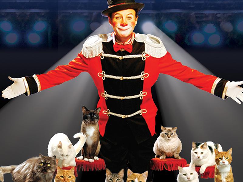 popovich_comedy_pet-theater_2020_jan_blog